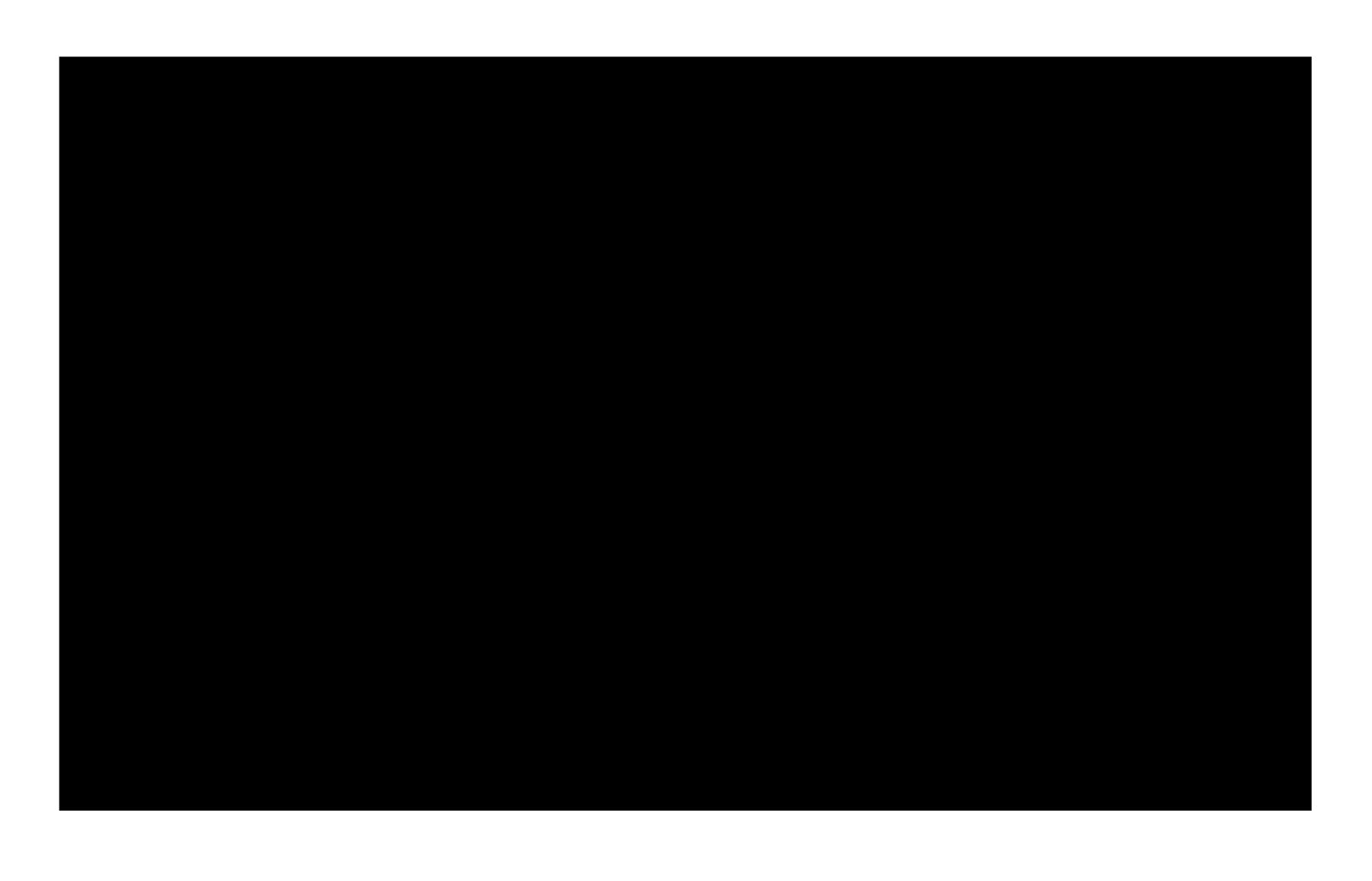 p11-trans-1